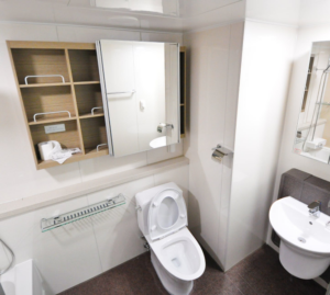 Common Causes of Toilet Problems