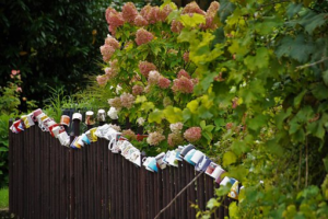 4 Ideas For Decorating Your Garden Fence