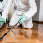 Top 4 Must-Know Benefits Of Hiring A Pest Control Company To Your Home