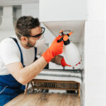 Apply These Secret Techniques To Improve Pest Control
