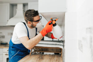 Apply These Secret Techniques To Improve Pest Control