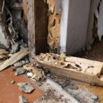 4 Signs of a Termite Infested House