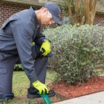 Simple and Important Ways to Prepare for Pest Control Services