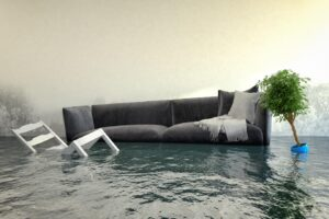 Apres Le Deluge: What to Do After a Flood in Your Home