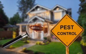 How to Find the Best Residential Pest Control Service in Bixby OK