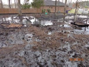 Exxon Mobil Disaster