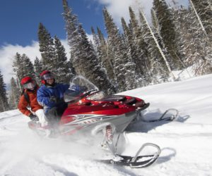 Couple Snowmobiling