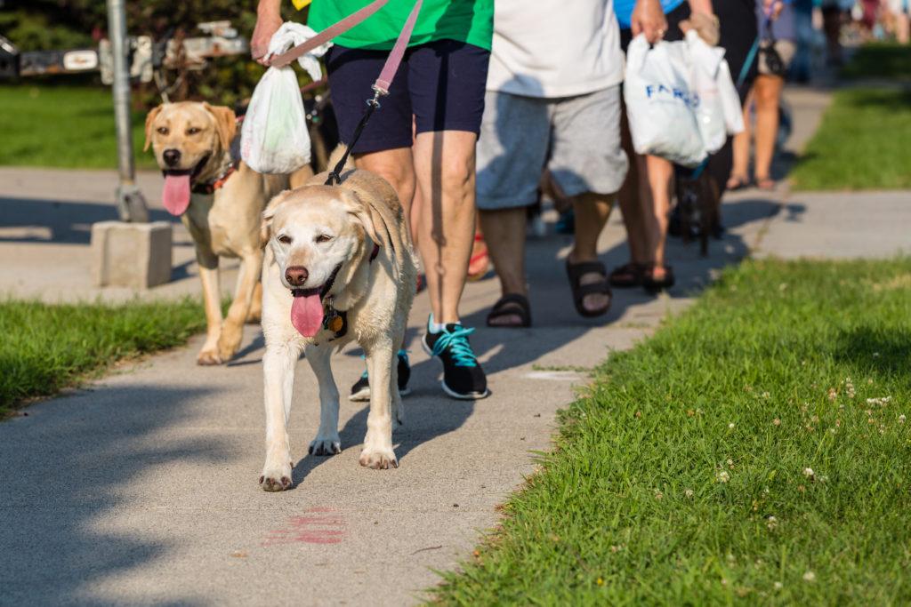 Furry Friends Pet Walk