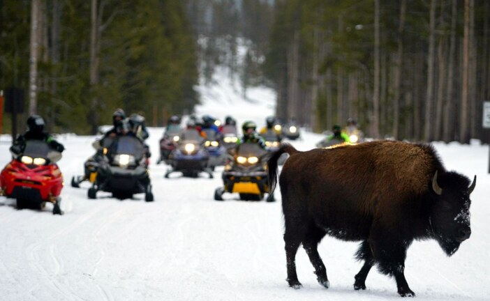 Lottery planned for Yellowstone snowmobile tags