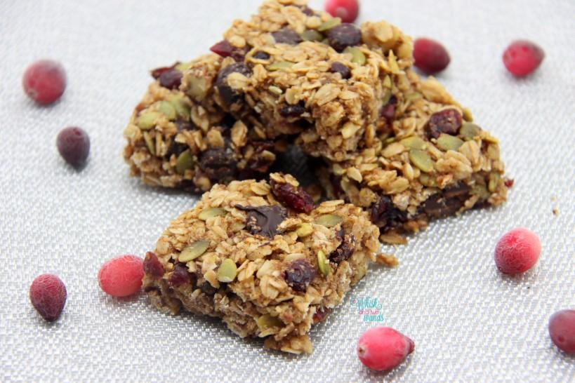 Cranberry Bliss Granola Bars, Dark Chocolate