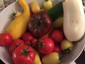 Pictured: Armenian cucumber, White Star Hybrid eggplant, Manitoba tomatoes, Yellow Pear tomatoes, Black Krim tomatoes, cream sausage tomatoes, Sprite tomatoes