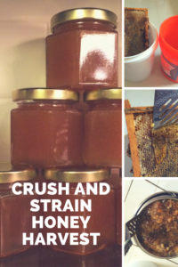 Step-by-step crush and strain DIY for honey extraction without expensive equipment
