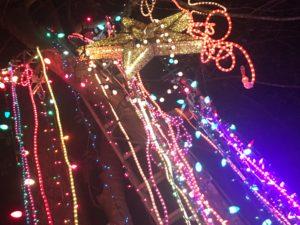 Christmas lights mardi gras wacky silly crazy