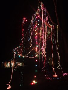 Wild, wacky Mardi Gras lights for Christmas