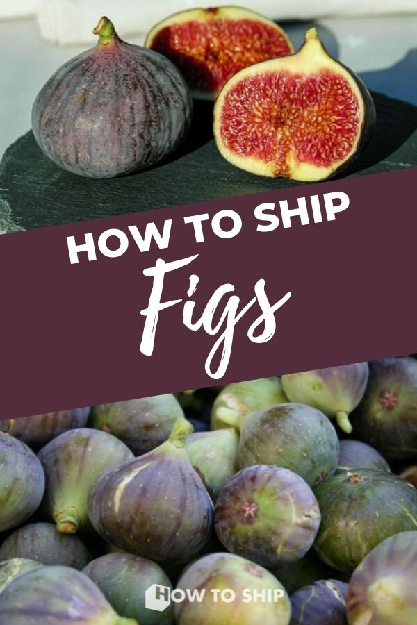 HOW TO SHIP FIGS