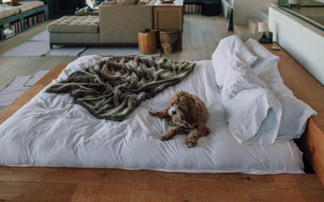 shipping a futon