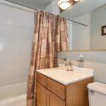 Lakeview - 655 West Irving Park Road Unit 5002, Chicago, IL 60613 - Bathroom