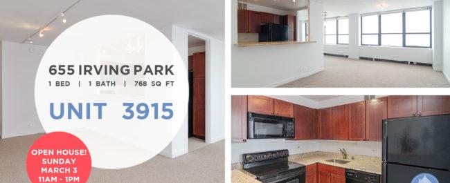Lakeview - 655 West Irving Park Road Unit 3915, Chicago, IL 60613