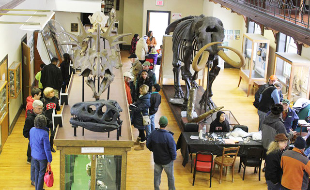 geology-museum-receptions