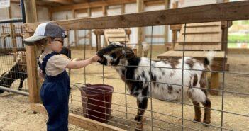 petting zoos nj New Jersey