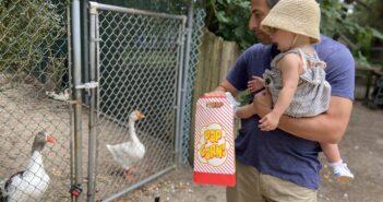 popcorn park refuge zoo