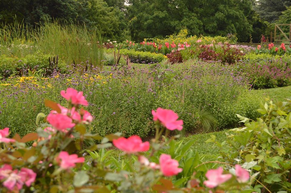 NJ gardens, Rutgers garden