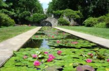 nj mom best gardens and nature centers in New Jersey botanical garden skylands