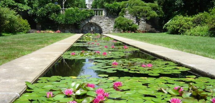nj mom best gardens and nature centers in New Jersey botanical garden skylands