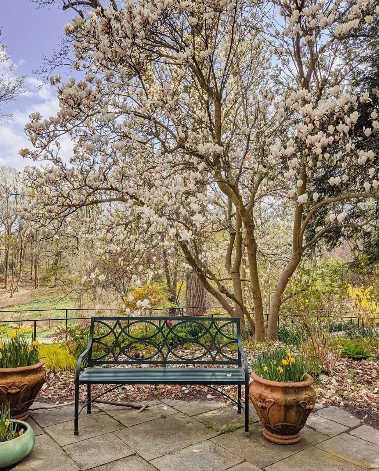 NJ gardens, reeves reed arboretum
