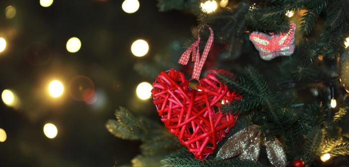 NJ Charities season of giving njmom