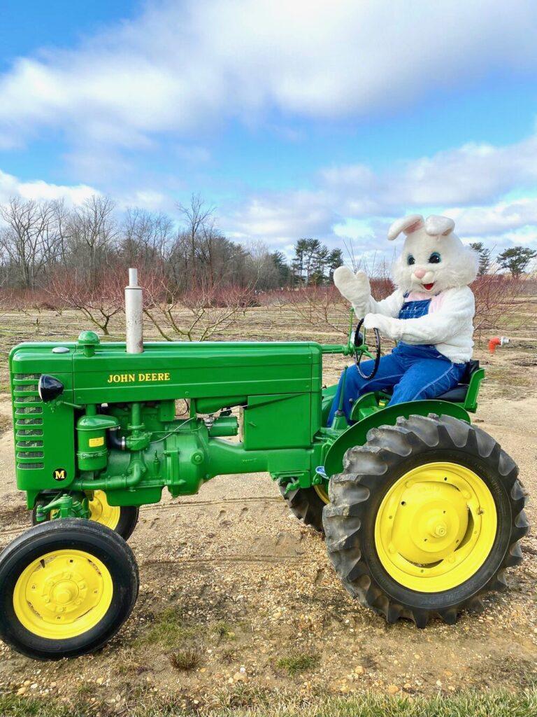 fun things to do in NJ, Easter egg hunts nj
