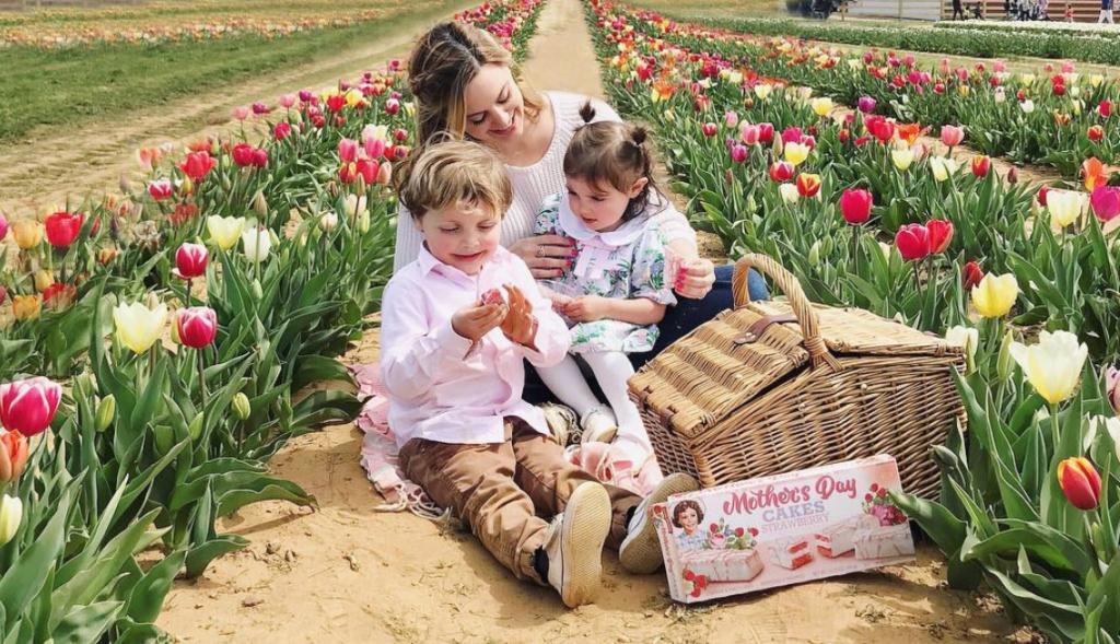photoshoots in nj tulip farms