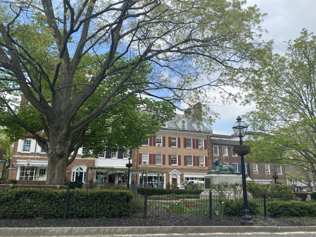 Best Downtowns in NJ, downtown Princeton