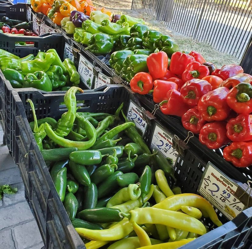 nj farmers markets