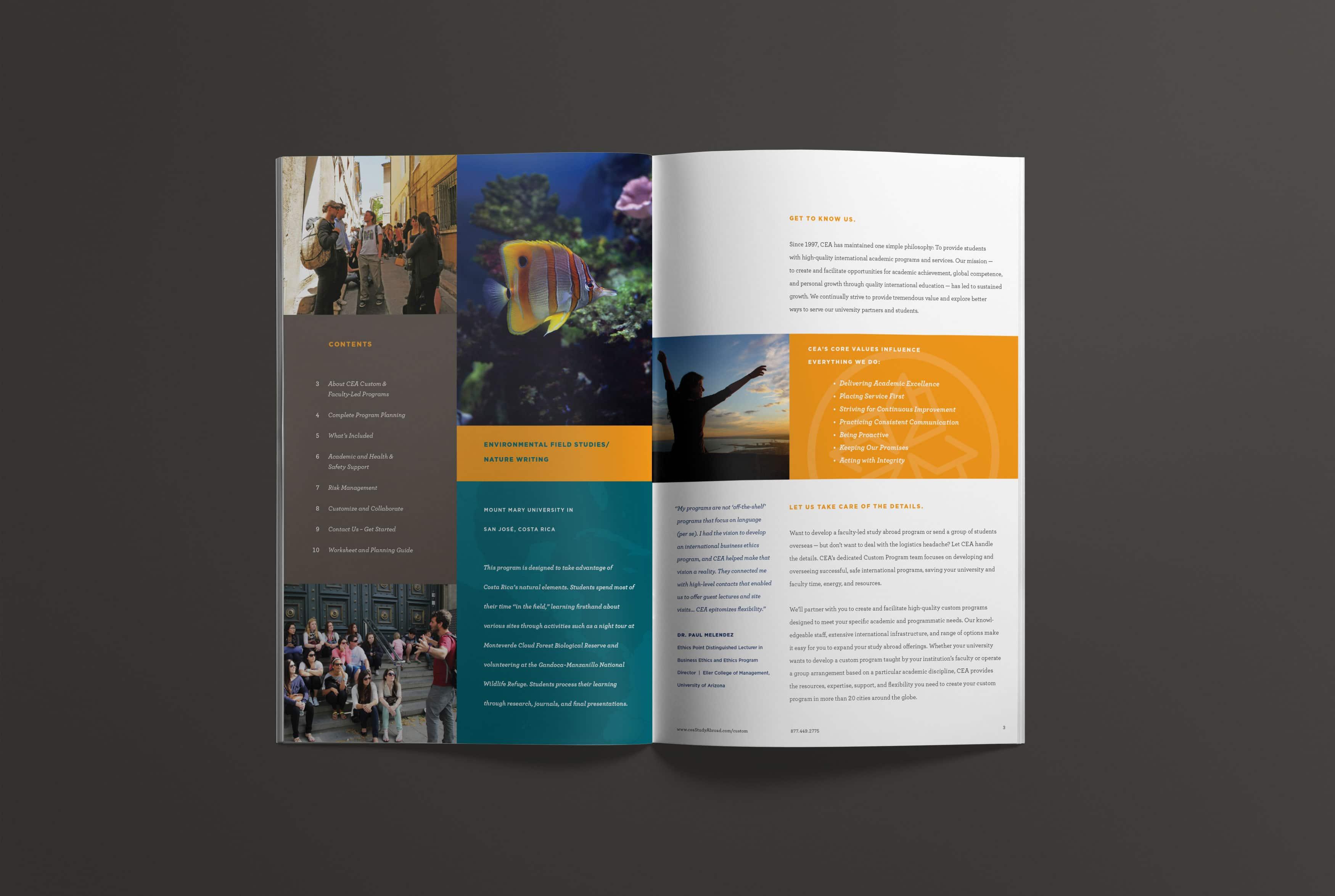 CEA-Rebrand-Custom-Programs