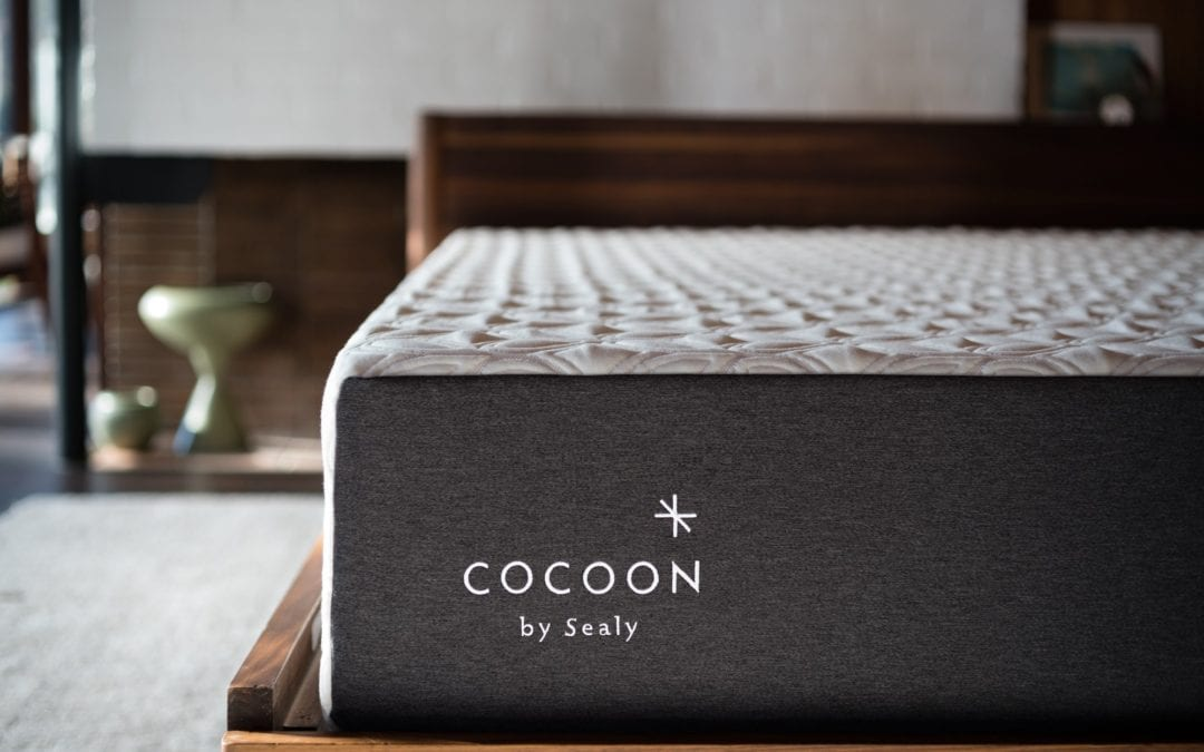 Cocoon by Sealy