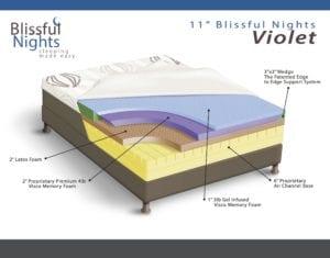 Cutaway View of BN Violet