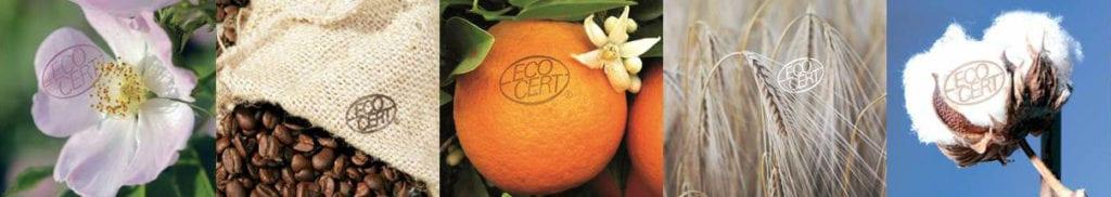 Ecocert Inspection Certification Sustainable Development