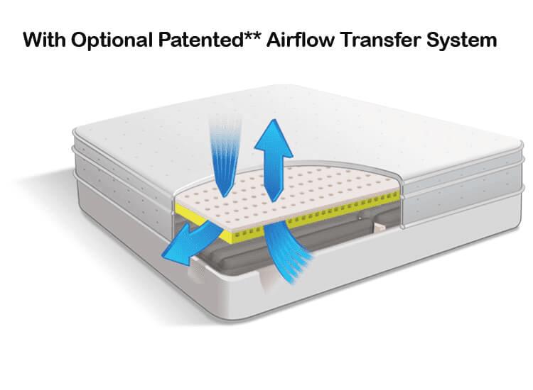 Airflow Transfer System in Air-Pedic 500