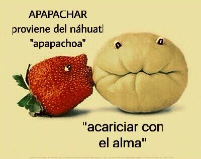 El apapacho