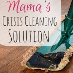 The Busy Mama's Crisis Cleaning Solution
