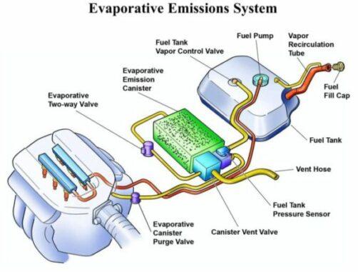 Evaporative Emission Control System (EVAP)