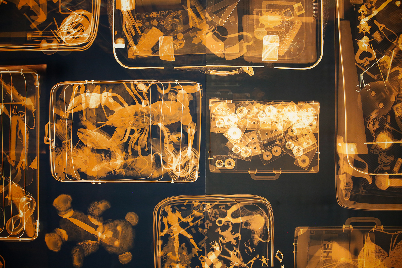 Detail of a backlit mural of x-rayed luggage, revealing surprising contents like a briefcase full of cassette tapes, a teddy bear with a knife inside, a suitcase full of sea creatures, and another full of kids toys.