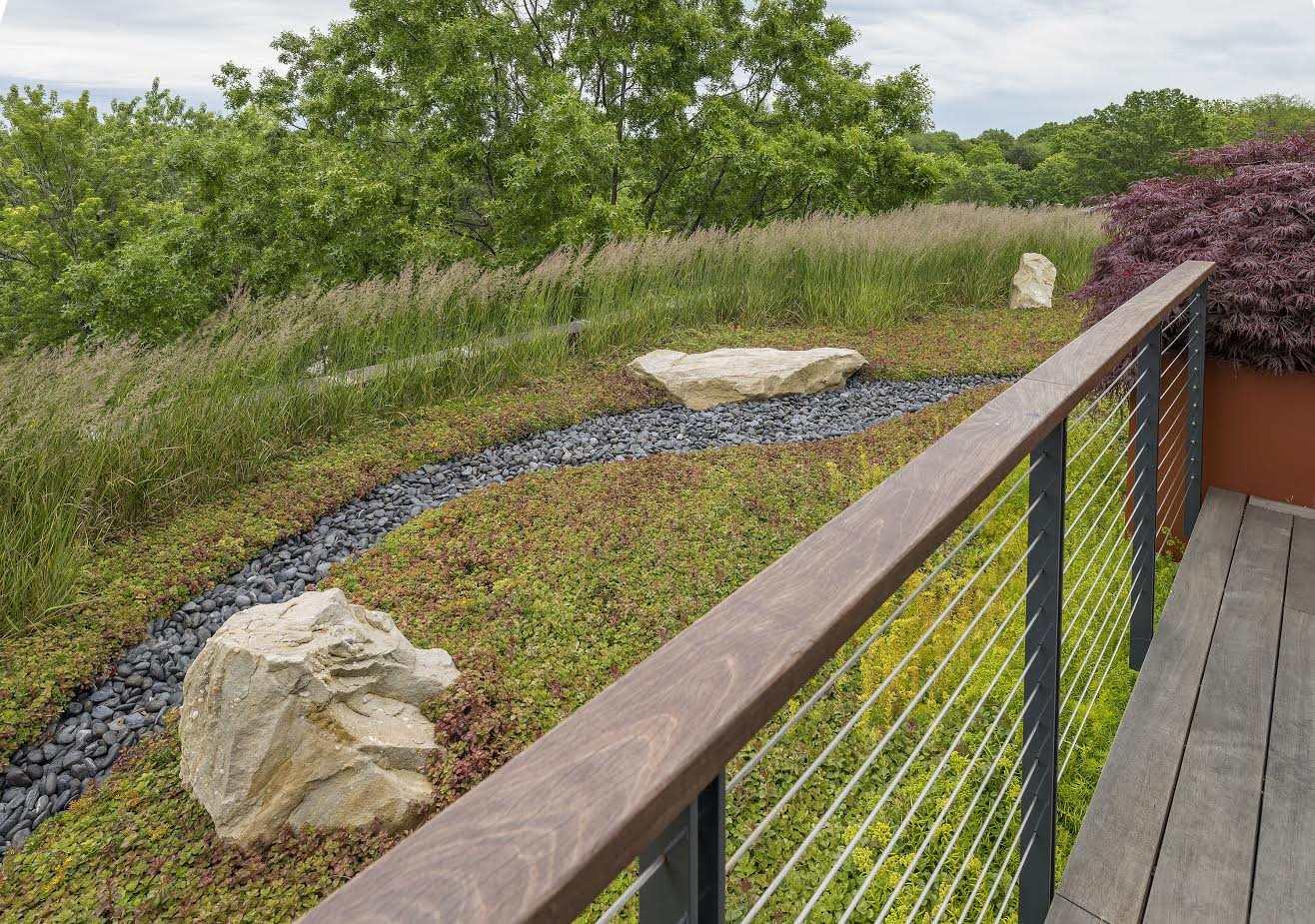 Virginia Bust Designs - Borrowed Scenery - shakkei - Landscape Design