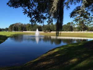 Front Lagoon and Fountain