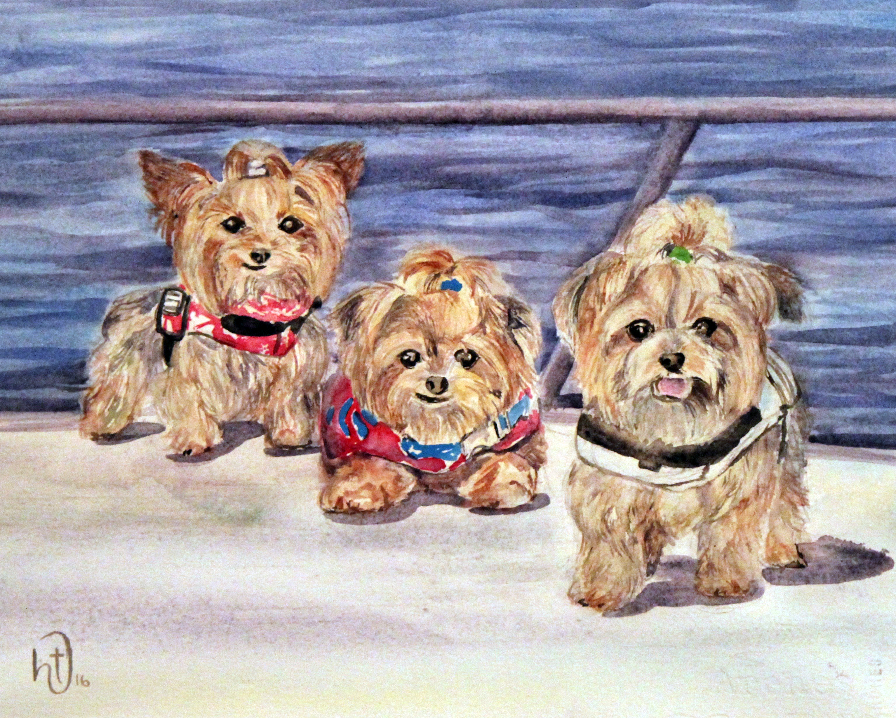 daves-dogs-11x14-watercolor