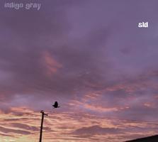 SLD Indigo Gray