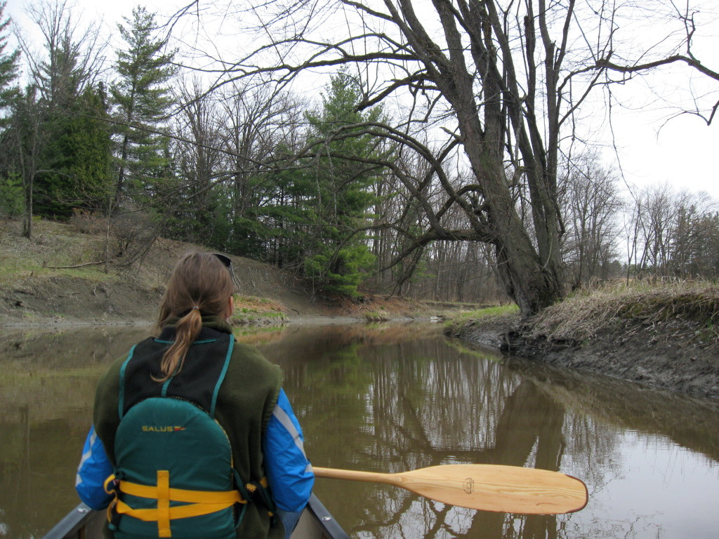 A warmly dressed woman sits in the bow of a canoe as it glides up Green's Creek on a grey, Spring day.
