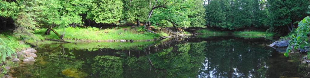 Flooded sinkhole - Snye River