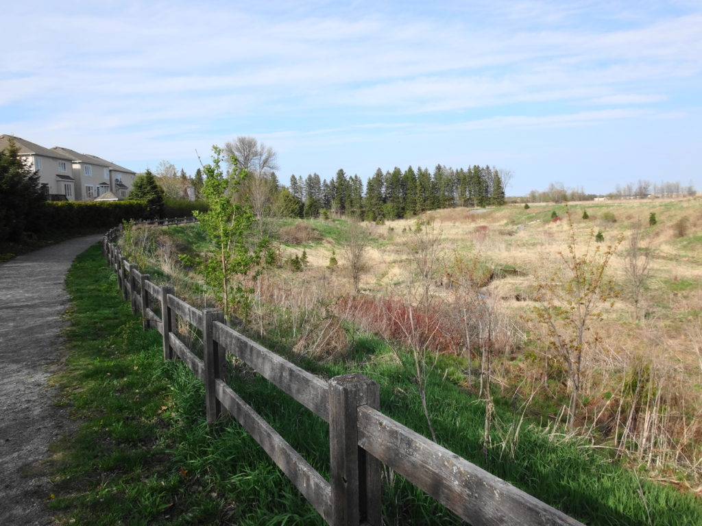 A pathway runs along the top of the Lower Poole Creek Valley, with homes clustured along the outside.